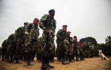 """HRW denuncia """"brutales medidas"""" de ELN y disidencias por la pandemia"""