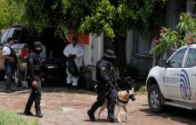 Hallan 23 cuerpos en una fosa en el occidente de México
