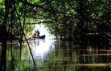 Colombia, el país donde más se matan defensores del medioambiente