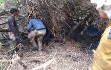 Liquidados 3 focos del incendio en Salamanca
