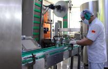¿Por qué creció 6.1% la industria en Barranquilla durante junio?