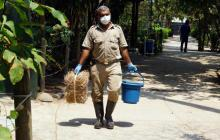 Gobernación dará $60 millones a Zoológico para su funcionamiento