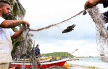 En video | Reactivación de playas, anhelo de caseteros y pescadores