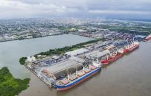 Movimiento de carga por el Puerto cayó 5% en lo que va del año: Asoportuaria