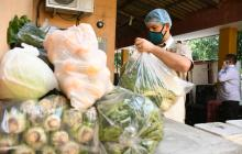 Cada miércoles el Distrito entregará alimentos al Zoológico