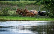 Solicitan alertas tempranas en sur del Atlántico por caudal del Río