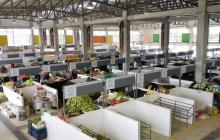 Plantean vitrina digital para pequeños productores de Córdoba