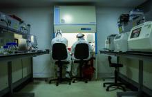 Dos científicos trabajan en la extracción de material genético en una de las secciones del laboratorio de Biología Molecular.
