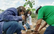 En La Guajira fueron sembrados 40 mil árboles y plantas