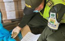 Aprehenden 14 mil kilos de concentrado de contrabando para mascotas