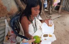 Al Banco de Alimentos acuden todas las etnias con grupos organizados.