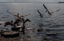 La oposición denuncia riesgo de derrame de crudo venezolano en el Atlántico