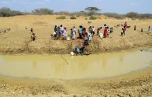 """""""En La Guajira siguen vulnerando los derechos de los niños wayuu"""": veeduría"""