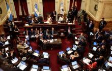 La ley de aborto ya se trata en el Senado argentino