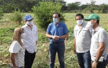Cinco mil agricultores se beneficiarán del programa Semillas de Vida