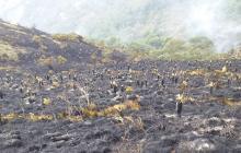 Controlan incendio que arrasó 800 hectáreas en páramo Santurbán