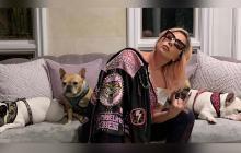 Disparan al paseador de perros de Lady Gaga y se llevan a dos bulldog