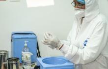 Cartagena divulga los puntos de vacunación contra covid-19