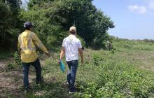 'Tierra en Paz', proyecto piloto de Países Bajos en el Magdalena