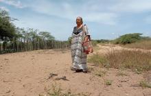 'Magola', la artesana wayuu que enseña su tradición