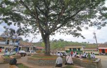 Asesinan a tres personas en zona rural del Jamundí