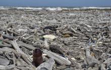 Crisis sanitaria agrava contaminación con residuos de un solo uso