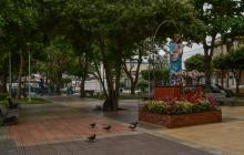 Investigan muerte de palomas en parque de Barranquilla