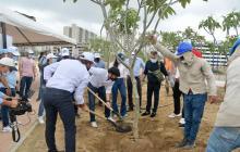 Barranquilla sembrará más de 5 mil árboles este 2021