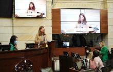Gobierno y oposición, un debate sobre los DD. HH. en el Senado