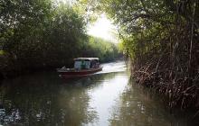Cantagallo, Bolívar, hará parte de red de ecoreservas