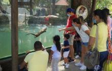Zoológico tendrá jornada de vacunación este fin de semana
