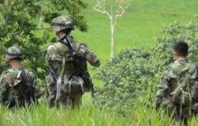 Mueren cinco miembros del Clan del Golfo en combates con Ejército