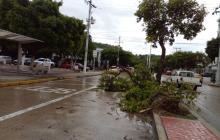 Ogricc activa atención a 47 barrios afectados por lluvias en Santa Marta