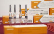 Invima autorizó donación de Conmebol de vacunas Sinovac