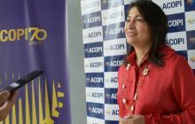 Acopi propone plan temporal de empleo de emergencia
