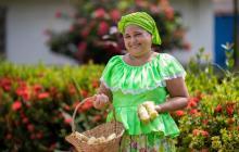 Este fin de semana se vivirá el Festival del Bollo de Ponedera, Atlántico
