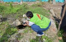 Descubren bodegas coloniales donde se almacenaba pólvora en Cartagena