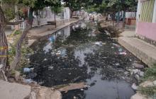 Ocho personas han muerto en Cartagena por dengue