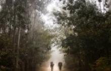 El camino sobre el destino | Columna de Ismael Cala