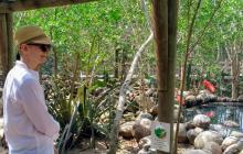 En imágenes | Así fue el recorrido de la actriz Tilda Swinton por el aviario de Barú