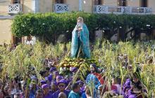 Así se celebró el Domingo de Ramos en la Costa