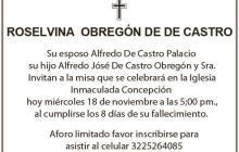 Roselvina Obregón De De Castro