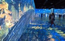 Obras de Van Gogh en Miami se ven con videomapping