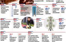Infografía: Norcorea y su programa nuclear