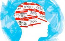 La pandemia mental