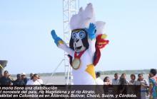 Conoce al anfitrión de los Juegos Centroamericanos y del Caribe