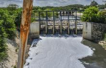 En video   Basuras y desechos sólidos flotan en el arroyo León