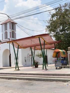 Las ciruelas que no 'rodaron' en Campeche