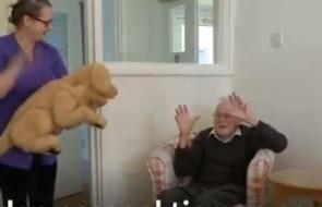 ¿Qué tanto benefician los animales robóticos en pacientes con Alzheimer?