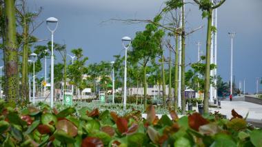 Barranquilla, ciudad jardín
